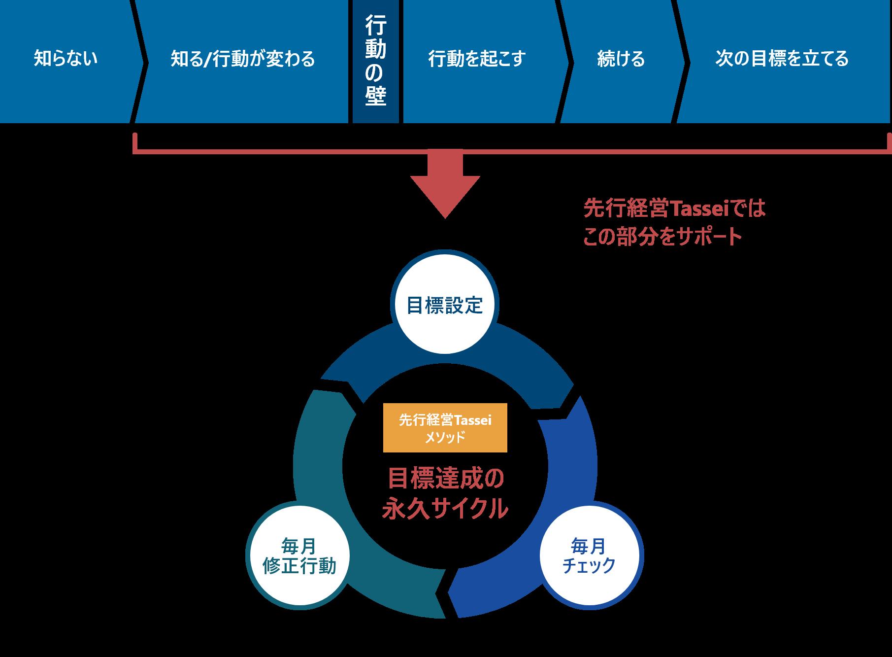 TASSEIのチャート図